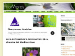 flora-silvestre-mediterraneo